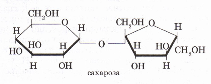 Сахароза - это... Состав сахарозы