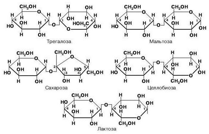 Примеры дисахаридов