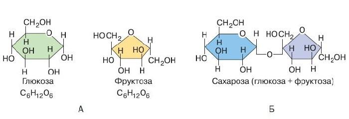 Сахароза глюкоза фруктоза