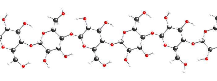 Молекула полисахарида