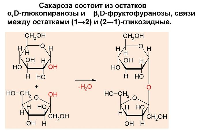 Гидролиз сахарозы