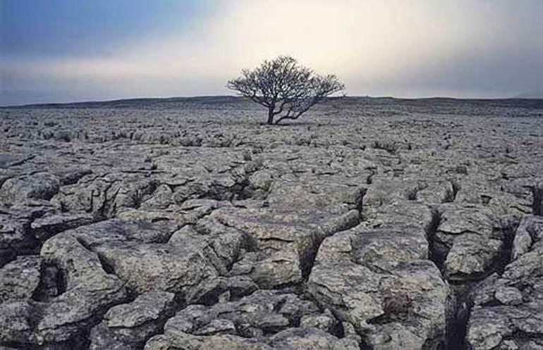 Эрозия почвы на что влияет