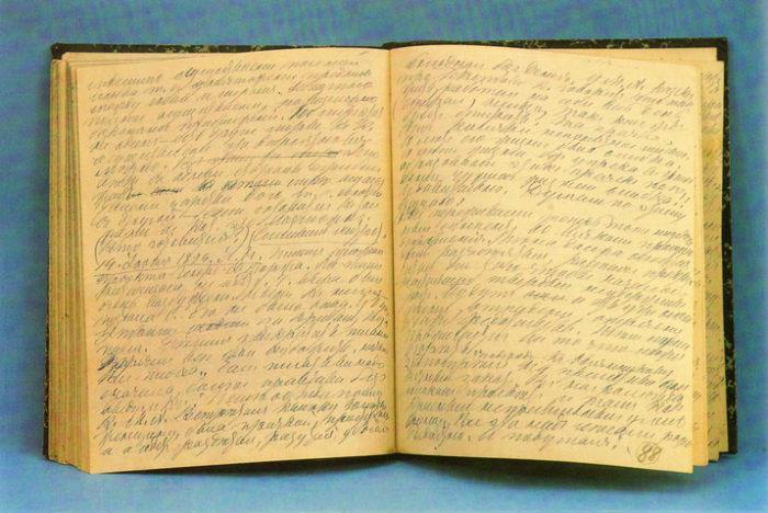 Дневник Толстого Л.Н.