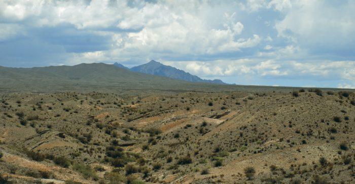 Рис. 3. Полупустыня в Патагонии. Аргентина