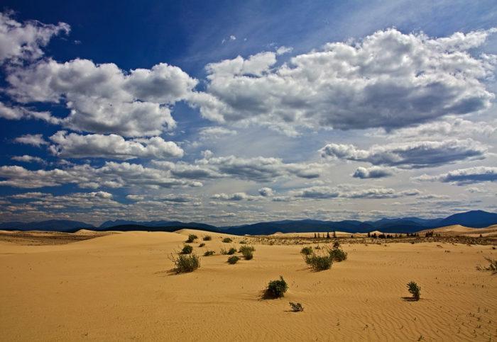 Рис. 6. Чарская пустыня. Забайкальский край