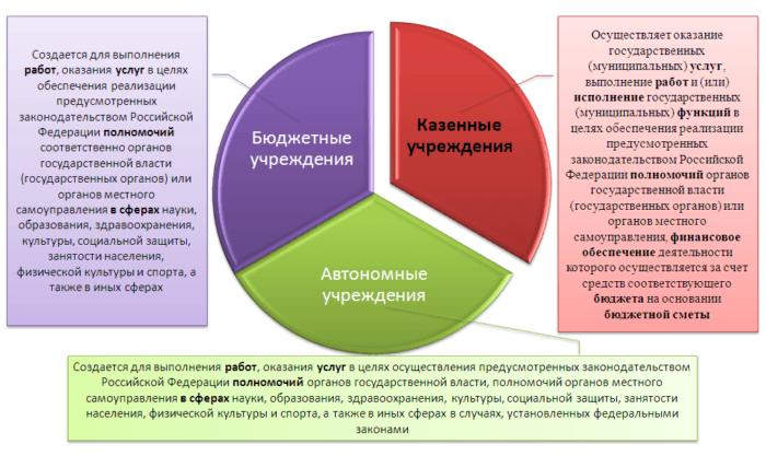 Рис. 1. Типы государственных (муниципальных) учреждений