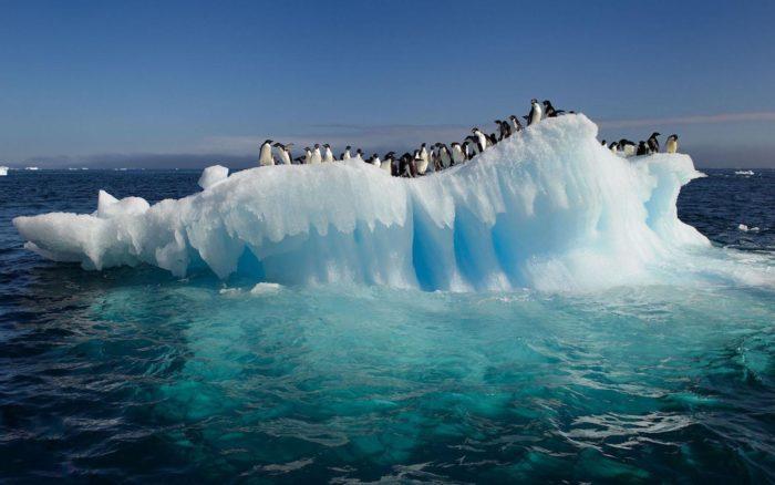 Рис. 3. Антарктический пояс
