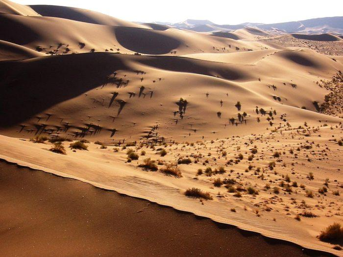Рис. 4. Дюны в пустыне Намиб