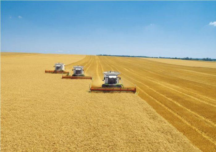 Рис. 1. Уборка зерна в Краснодарском крае