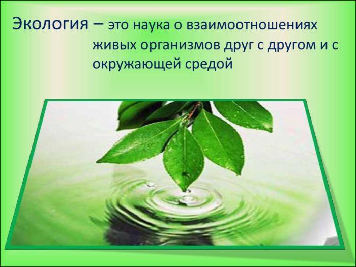 """Рис. 1. Определение термина """"экология"""""""