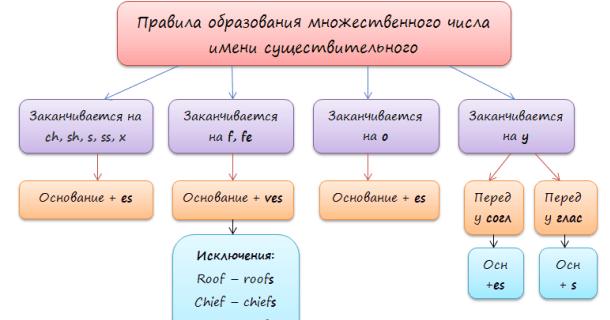 Рис. 1. Правила образования множественного числа в английском языке