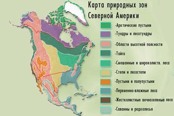 Рис. 1. Природные зоны Северной Америки