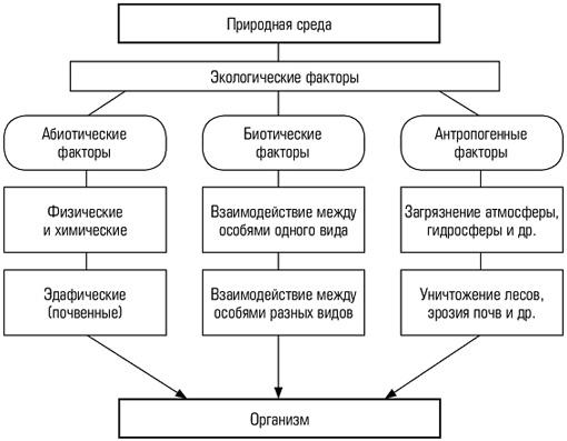 Рис. 1. Схема разновидностей экологических факторов