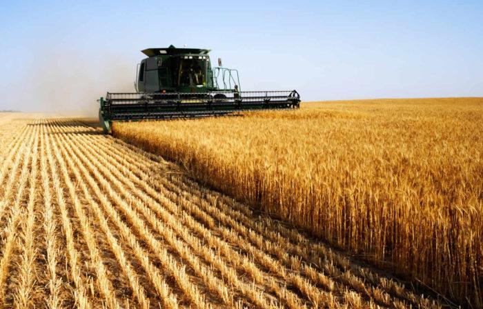Рис. 2. Сельское хозяйство