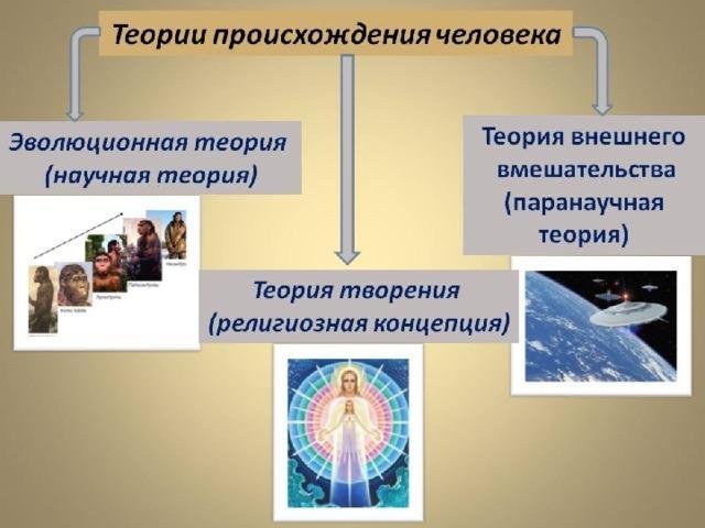 Рис. 2. Теории происхождения человека