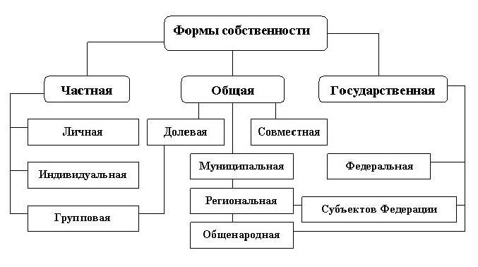 Рис. 3. Виды и формы собственности