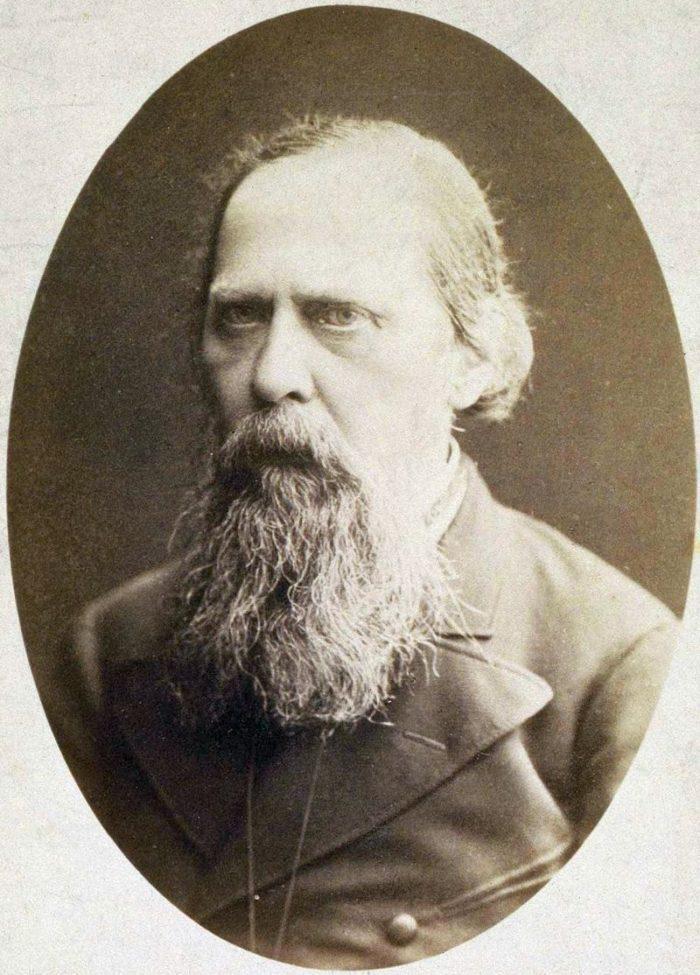 Рис. 5. Михаил Салтыков в 1889 году