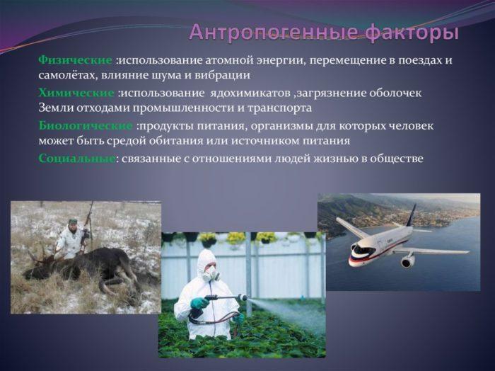 Рис. 4. Антропогенные факторы