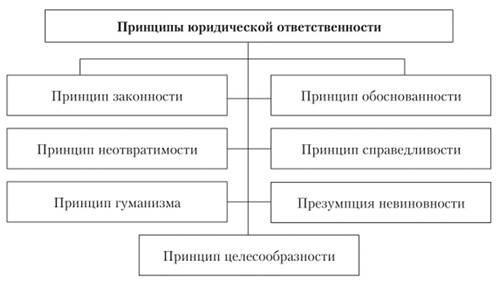Рис. 3. Принципы юридической ответственности
