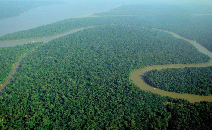Рис. 4. Река в джунглях Амазонии. Бразилия