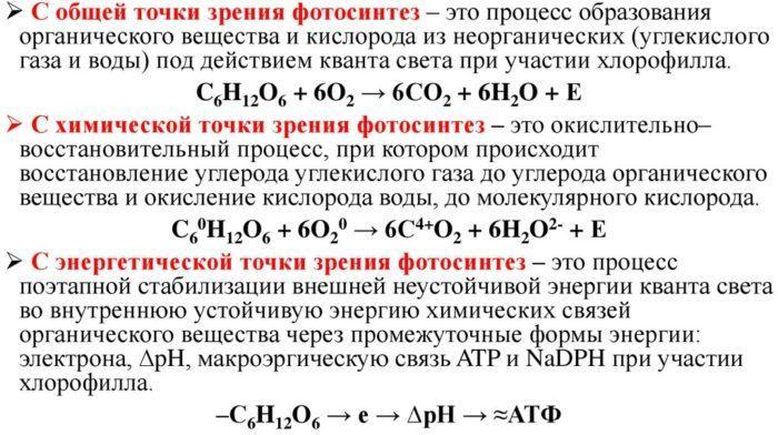 Рис. 4. Химическая формула фотосинтеза