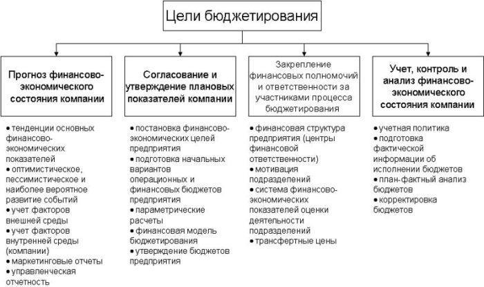 Рис. 2. Цель бюджетирования
