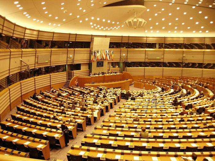 Рис. 5. В Европейском парламенте