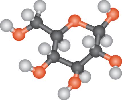 Рис. 1. Молекула декстрозы