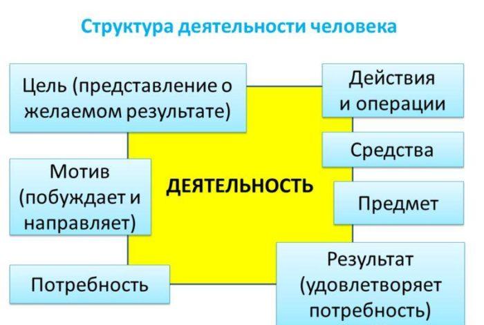 Рис. 2. Структура деятельности человека