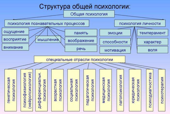 Рис. 3. Структура общей психологии