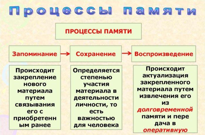 Рис. 3. Процессы памяти