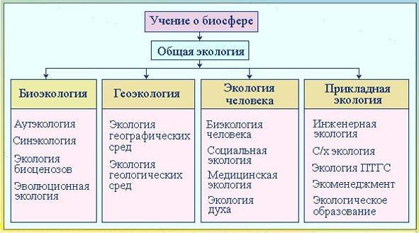 Рис. 3. Структура общей экологии