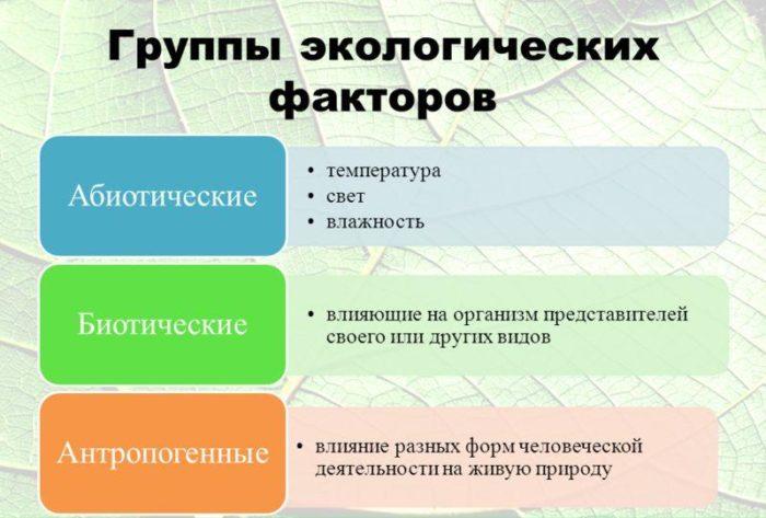 Рис. 4. Группы экологических факторов